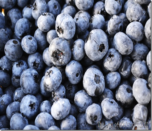 blueberries 040