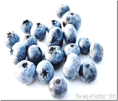 blueberries 042