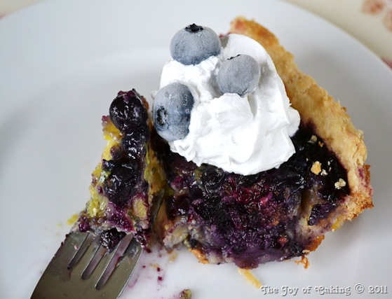 blueberry custard pie 017