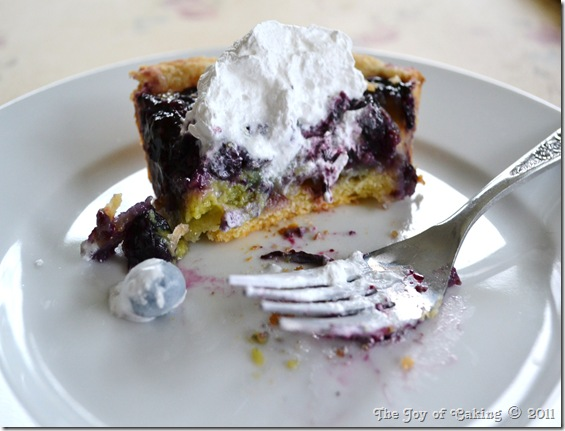 blueberry custard pie 026