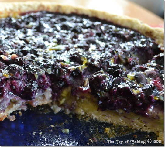 blueberry custard pie 027
