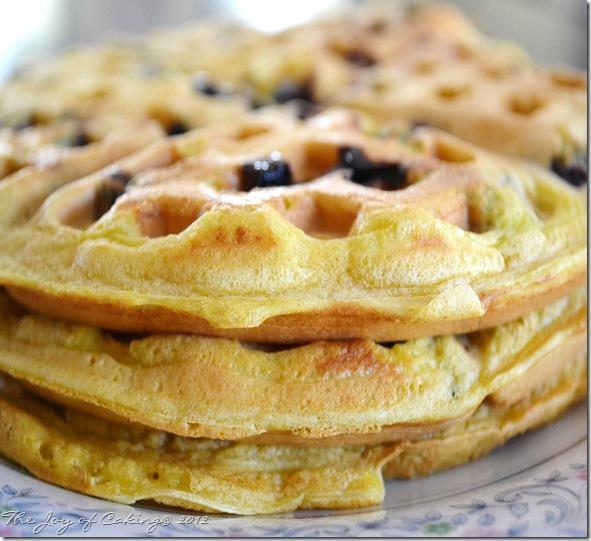 waffles 028