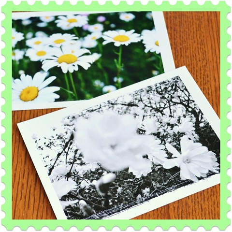 postcards1 to use