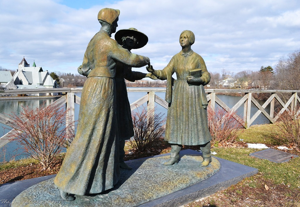 Citaten Seneca Falls : Elizabeth cady stanton the joy of caking
