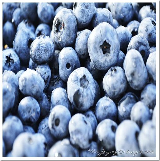 blueberries 041