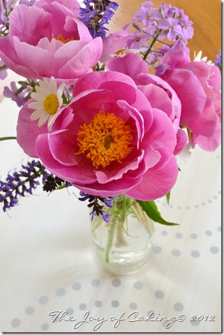 peonies and frolic 015