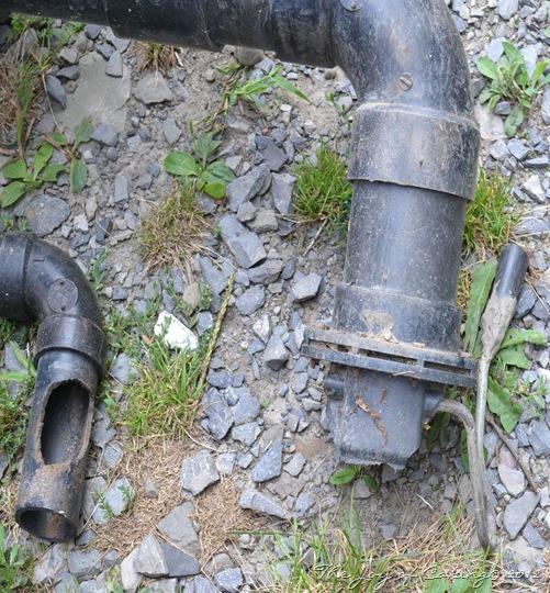 frolic plumbing 006