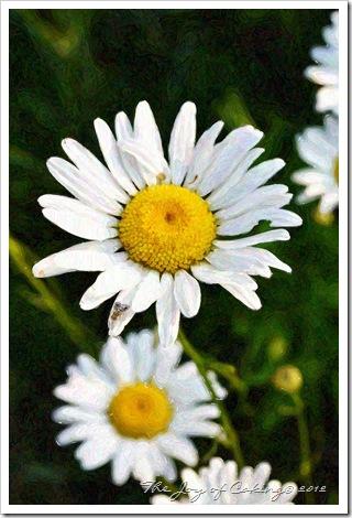flowers 019paint